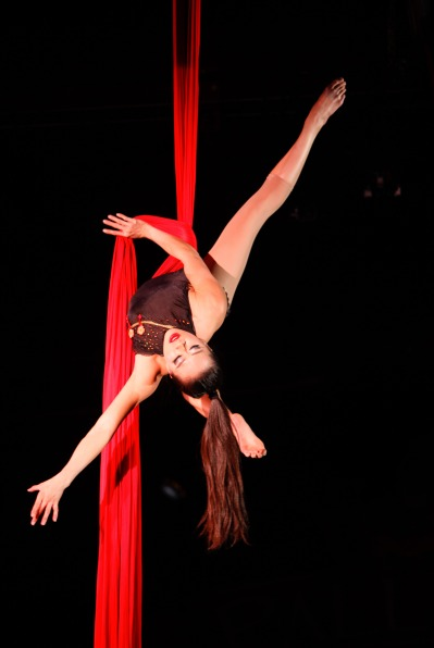 Seattle-Aerialist-1-pic-1