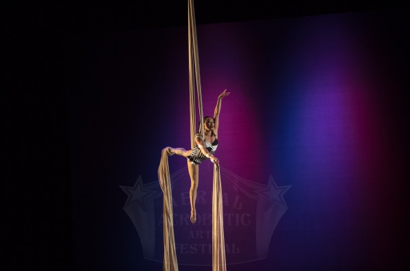Seattle-Aerialist-1-pic-3