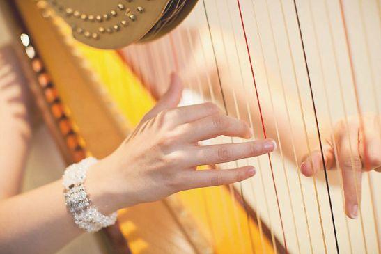 Toronto-Harpist-1-pic-3